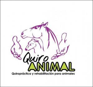 Quiropráctica para animales
